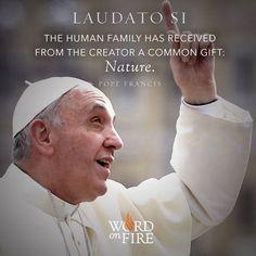 Pinterest Catholic Books, Catholic Quotes, Roman Catholic, Pope Francis News, Pope Francis Quotes, Pope Quotes, Fulton Sheen, Pope Benedict Xvi, Religion Quotes