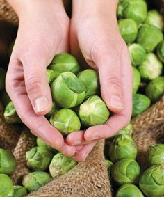 Brussels Sprouts More
