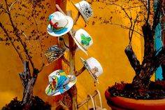 Hand painted panama hats