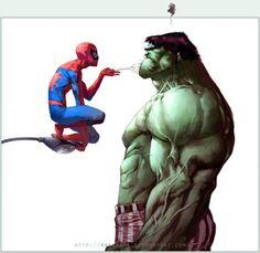 Spider Man & Hulk