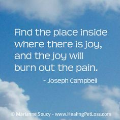 """Find the place inside where there is joy, and the joy will burn out the pain"". - Joseph Campbell"