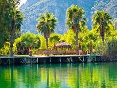 At the Dalyan River / Turkey    Green palms, river and mountsins
