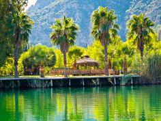 At the Dalyan River / Turkey.