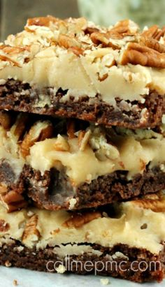 Praline Brownies...a delicious combination of chocolate, rich praline icing and toasted pecans.