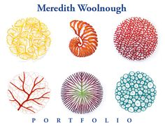 The Artwork of Meredith Woolnough: Interview for X-Ray magazine