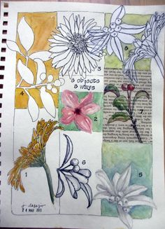 JANE LaFAZIO: from my sketchbook ~ 8 objects 8 ways ~ flowers (12×9 inches) ©2013