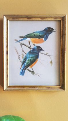 FOR SALE: Framed Birds Starlings Print Wall Decor by SoDarnedVintage on Etsy  #art #wallart #gallerywall #framedart #birds #birdart #starlings #bluebirds #fleamarketstyle #bohostyle #bohodecor #walldecor #sodarnedvintage #etsy