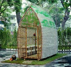 Kleines-Gewächshaus-selber-bauen-exotisch