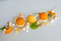 Summer Menu 2013 - Poached Apricots with Toasted Meringue & Apricot Sorbet #fearringtonhouse
