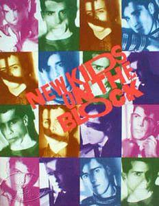 NEW KIDS ON THE BLOCK 1989-90 Tour Concert Program Programme Book | on eBay