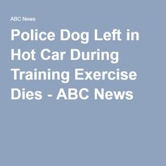 Another dog. A young 2 year old puppy. Can  you imagine how it felt to be in a hot car in the summer?!  This time lets leave the police officer in the car for 2 1/2 hours and see how it works out for them !!!!!!Police Dog Left in Hot Car During Training Exercise Dies - ABC News