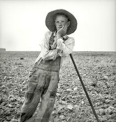 Hoe Culture 1936, Dorothea Lange