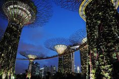 Singapore Sky bridge office  | Recent Photos The Commons Getty Collection Galleries World Map App ...