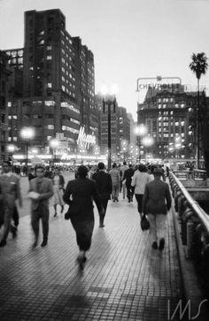 Viaduto do Chá 1956