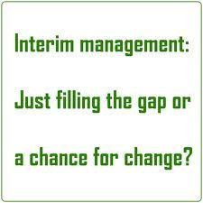 Short Description of Interim Management.