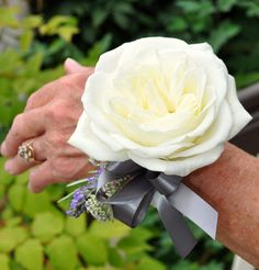 {Beautiful Wrist Corsage Of: Large White Garden Rose, Fresh Lavender, White Astrantia, & Silver Satin Ribbon·················································}