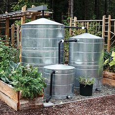 """1"""" of rain puts about 600 gallons of water atop a 1,000 square foot house.  That's a lot of rainwater to capture and a cistern / water butts can do the trick. Captured directly from a downspout, or rain chain, a cistern will have your garden water ready. These cisterns collect rainwater from a nearby roof and when the tanks are full water it's dispersed through a gravity-fed drip system that irrigates crops."""