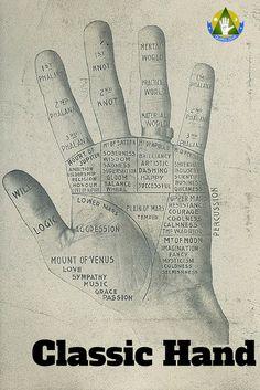 """Representação clássica das diversas áreas da mão e dos seus significados – retirado do livro """"The laws of scientific hand reading"""" de William G. Benham"""