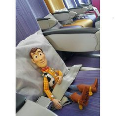 Even Woody enjoys the seat  Photo credit: Instagram @pearieswee