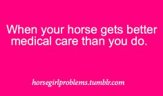 Dental care, hair care, medical care and better clothing. My horse has it good :) Horse Girl Problems, Country Girl Problems, Funny Horse Memes, Funny Horses, Medical Care, Dental Care, Horse Quotes, Horse Sayings, Cowgirl Secrets
