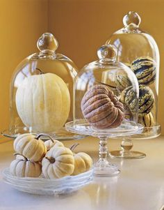 Why is that it when you put something in a bell jar, it looks amazing? Case in point; pumpkins.