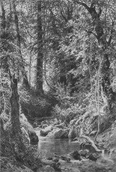 1880+Forest+Stream.jpg (678×1000)