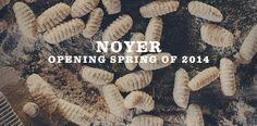 Opening Spring 2014.
