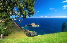 Norfolk Island Bird Rock - Norfolk Island - Wikipedia, the free encyclopedia