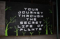 Welling Court mural project – Fekner/Leicht 2010