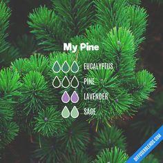 My Pine — Essential Oil Diffuser Blend #Essentialoildiffusers