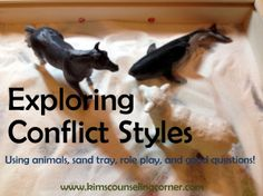 Exploring Conflict Styles