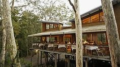 Intimate bush setting: The Gunyah at Paperbark Camp.