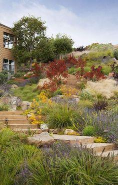 Water wise California Hillside Garden - APLD Awards