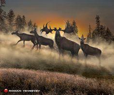 The extinct Irish elk (Megaloceros giganteus): a stag and his does in a mist-covered meadow at sunset. Prehistoric World, Prehistoric Creatures, Irish Elk, Dinosaurs Extinction, Extinct Animals, Wildlife Art, Creature Design, Natural History, Animal Kingdom