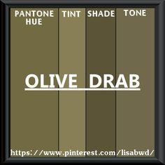 PANTONE SEASONAL COLOR SWATCH OLIVE DRAB