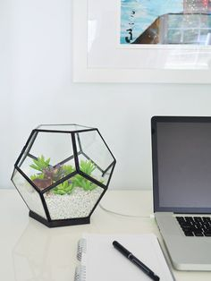 DIY a faux terrarium with fake succulants at JoAnns-That Didn't Work Like I Thought It Would… | Young House Love
