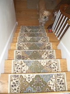 Best 1000 Images About Carpeting On Pinterest Stair Runners 400 x 300