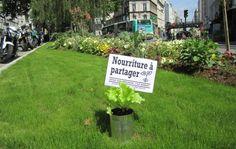Pense à prendre une salade sur la colonne Morris !   La COMU   Crédit : Incredible Edible