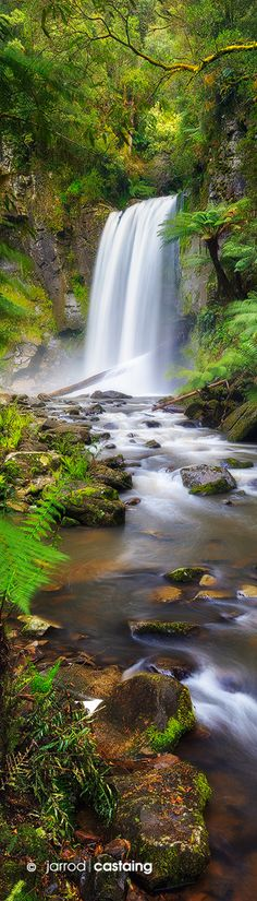 Hopetoun Falls on the Aire River, Otway Ranges, Victoria, Australia by Jarrod Castaing.