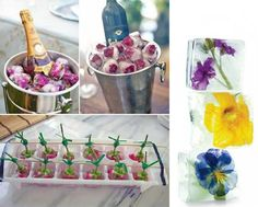 Flower ice cube decorations and champagne chiller duo Snacks Für Party, Party Drinks, Tea Party, Cocktails, Flower Ice Cubes, High Tea, Food Art, Food Food, Party Planning