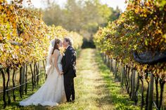 "Fall in Love"" Vineyard Wedding 