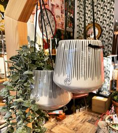 Ive still got a couple of hanging planters left in the shop. 2 sizes available we are open until 4pm today and 10-2 tomorrow so go on treat yourself for Christmas #colne #highst #shopping Hanging Planters, Happenings, To Go, Leaves, Couple, Christmas, Shopping, Instagram, Events
