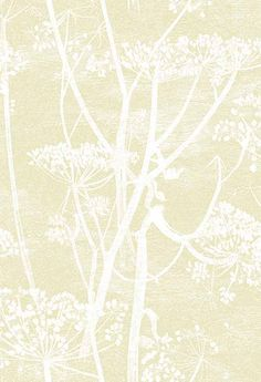 Cow Parsley Light Gold wallpaper by Cole & Son