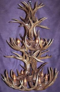 White tail deer antler chandelier. Pretty sure my dad could easily make this!