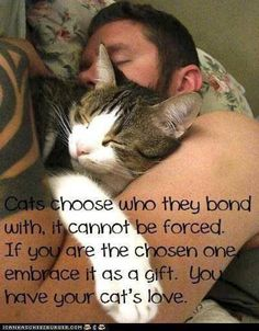 So completely true....you can't MAKE a cat do anything and that includes love!