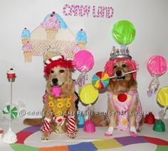 Homemade King Candy and Princess Lolly Costumes for our Pet Dogs... Coolest Homemade Costumes