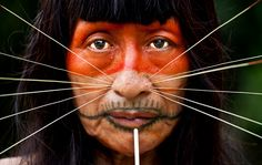 An Amazonian Tribe have revealed the secrets behind their medicine in a 500 page encyclopedia, the first of its kind. The Matsés people of Peru and Brazil have for the first time in history put pen to paper regarding their ancient traditional medical practices. Acaté Amazon Conservation, a non profit organisation have help create the …