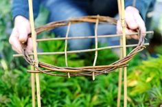 Making willow plant supports | gardenersworld.com