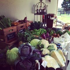 Stay tuned for recipes using our amazing farm fresh produce!
