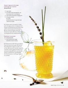 Sweet Agave Orange Lemongrass Cooler - Sweet Paul